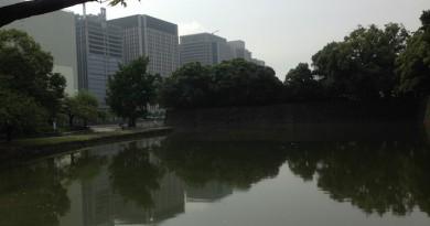 Near the venue